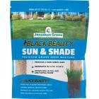 Jonathan Green Black Beauty 1 Lb. 375 Sq. Ft. Coverage Sun & Shade Grass Seed Image 1