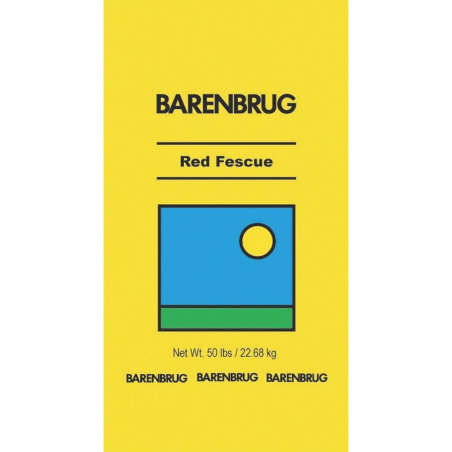 Barenbrug 50 Lb. 10,000 Sq. Ft. Coverage 100% Creeping Red Fescue Grass Seed Image 1
