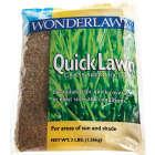 Wonderlawn Quick Lawn 3 Lb. 900 Sq. Ft. Coverage Annual & Perennial Ryegrass Grass Seed Image 6
